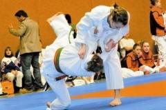 Judo_kaempfe (1)