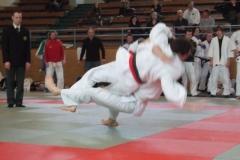Judo_kaempfe_ (2)